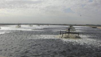 Wassertransport und Wasserqualität