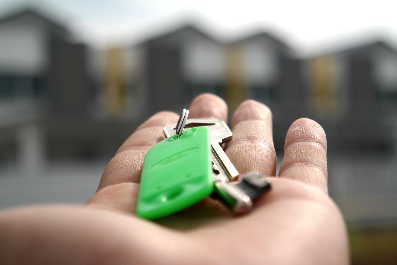 Aktien oder Immobilien?