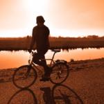 avatar for Sporttrader