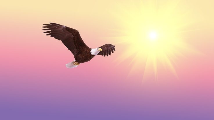DAX verteidigt die 13000 und fliegt gestärkt durch den Mai