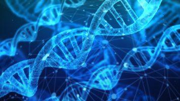 Medigene forscht an Immuntherapien um Krebs zu heilen