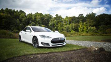weißer Tesla vor Waldstück