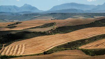 Südafrika in Rezession