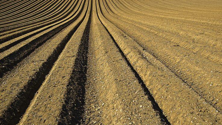 Agrarunternehmen Monsanto belastet Bayer weiterhin