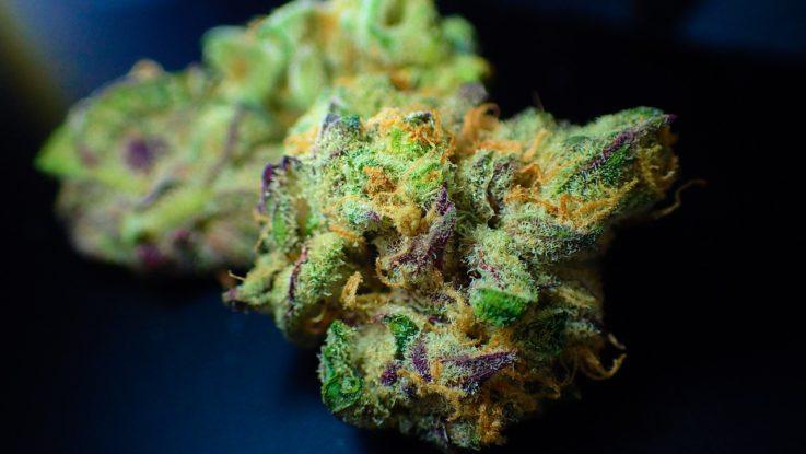 Aktienanalyse aus Cannabis-Sektor
