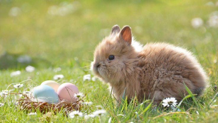 Handel zu Ostern